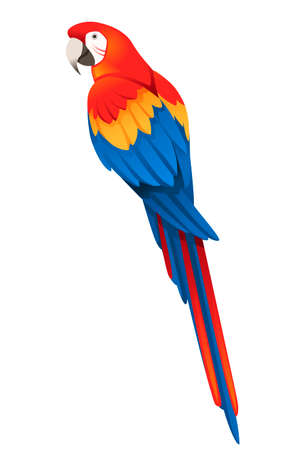 Adult parrot of red-and-green macaw Ara sitting (Ara chloropterus) cartoon bird design flat vector illustration isolated on white background.