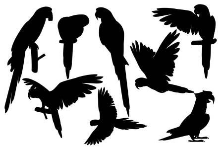 Black silhouette set of adult parrot of red-and-green macaw Ara (Ara chloropterus) cartoon bird design flat vector illustration isolated on white background.