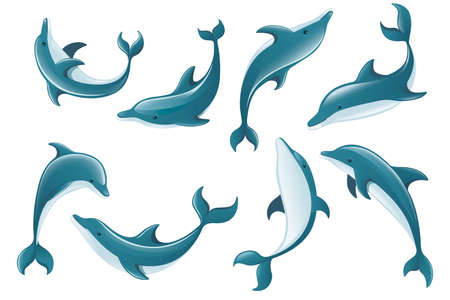 Set of blue dolphin cartoon sea animal design flat vector illustration isolated on white background. Ilustração