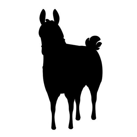 Black silhouette of llama cartoon animal design flat vector illustration isolated on white background front view