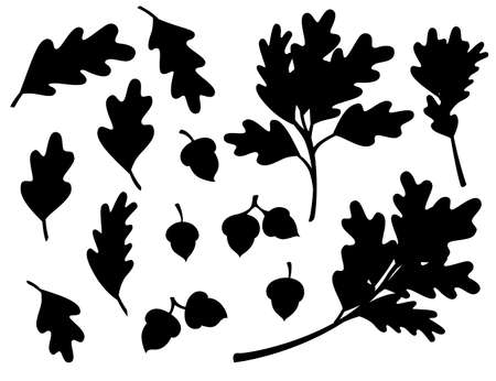 Black silhouette of various oak autumn leaves with acorn flat vector illustration isolated on white background.