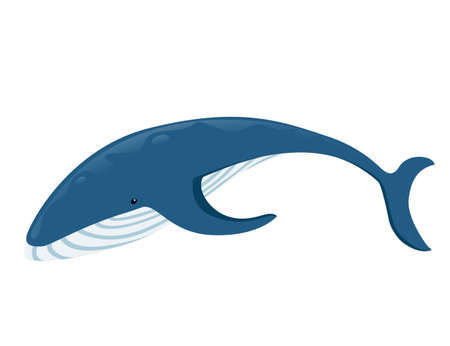 Big blue whale cartoon animal design biggest mammal on the earth flat vector illustration isolated on white background.