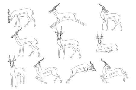 Set of african wild black-tailed gazelle with long horns cartoon animal design flat vector illustration on white background side view antelope outline style. Stock Illustratie