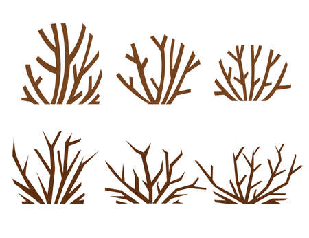 Desert sand plants and thorns weed flat vector illustration isolated on white background.
