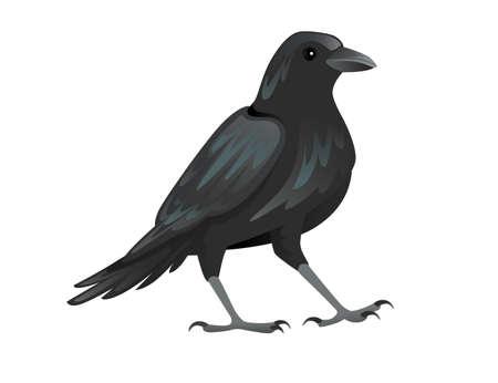 Black raven bird cartoon crow design flat vector animal illustration isolated on white background.