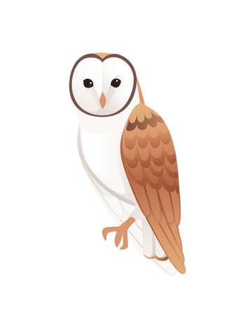Linda lechuza (tyto alba) con cara blanca y alas marrones dibujos animados bosque salvaje pájaro animal diseño plano vector ilustración aislada sobre fondo blanco.