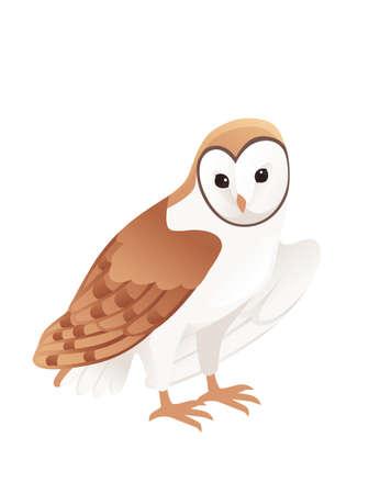 Cute barn owl (tyto alba) with white face and brown wings cartoon wild forest bird animal design flat vector illustration isolated on white background. Vektoros illusztráció