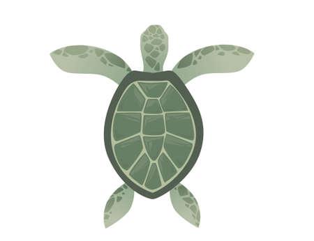 Big green sea turtle cartoon cute animal design ocean tortoise swimming in water flat vector illustration isolated on white background. Illustration