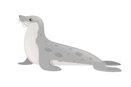 Cute seal cartoon animal design flat vector illustration isolated on white background. Vetores