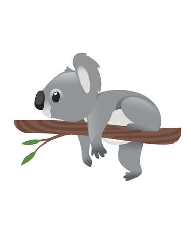 Cute grey koala bear lies resting on a wood branch with green leaves cartoon animal design flat vector illustration isolated on white background. Иллюстрация