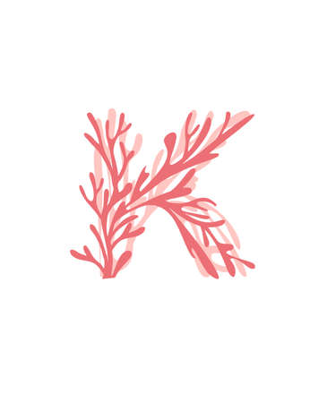 Letter K pink colored seaweeds underwater ocean plant sea coral elements flat vector illustration on white background. 일러스트