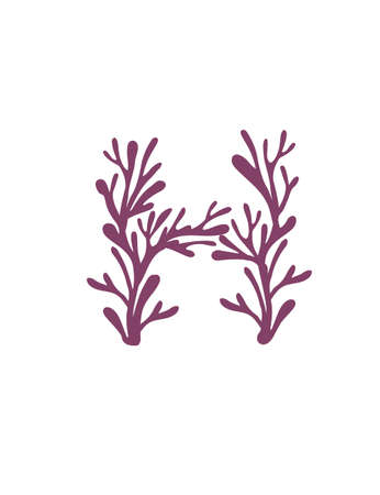 Letter H purple colored seaweeds underwater ocean plant sea coral elements flat vector illustration on white background.