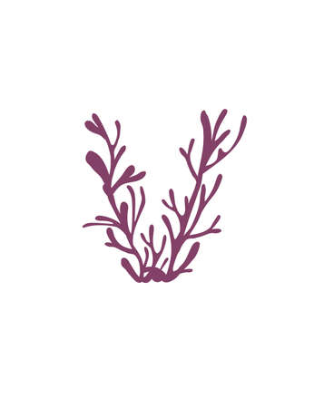 Letter V purple colored seaweeds underwater ocean plant sea coral elements flat vector illustration on white background.