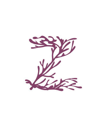 Letter Z purple colored seaweeds underwater ocean plant sea coral elements flat vector illustration on white background.