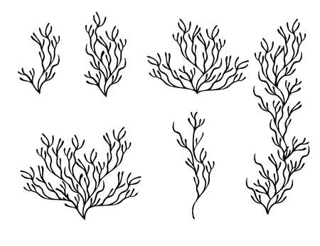 Set of black coral seaweeds silhouettes flat vector illustration isolated on white background.