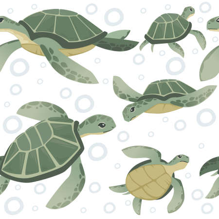 Seamless pattern of big green sea turtle cartoon cute animal design ocean tortoise swimming in water flat vector illustration on white background.