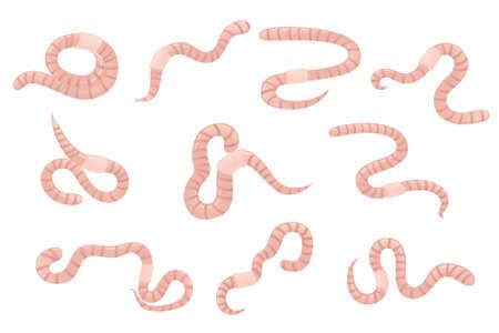Satz Regenwurm kriechen Cartoon-Wurm-Design flache Vektor-Illustration isoliert auf weißem Hintergrund.