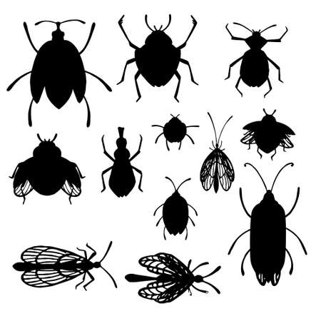 Set of cartoon simple beetle collection black silhouettes different insects flat vector illustration isolated on white background.