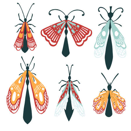 Set of cartoon simple beetle collection colored different insects flat vector illustration isolated on white background. Illusztráció