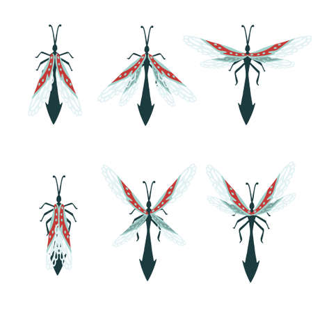 Set of simple flat dragonfly with different wings collection insects flat vector illustration isolated on white background.