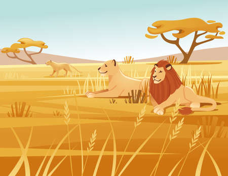 Landscape savanna background with clear sky yellow grass and tree lion family lying on ground flat vector illustration cartoon style.