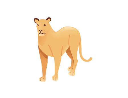 Adult lioness african wild predatory cat female lion cartoon cute animal design flat vector illustration isolated on white background.