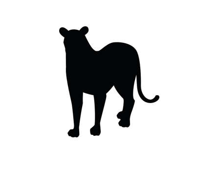 Black silhouette adult lioness african wild predatory cat female lion cartoon cute animal design flat vector illustration isolated on white background.