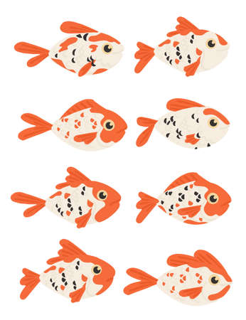 Set of eight orange and white colored fish koi carp cartoon animal design flat vector illustration isolated on white background. Illustration