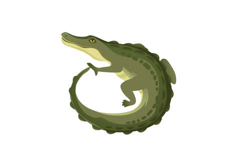 Green crocodile character big carnivore reptile cartoon animal design flat vector illustration isolated on white background