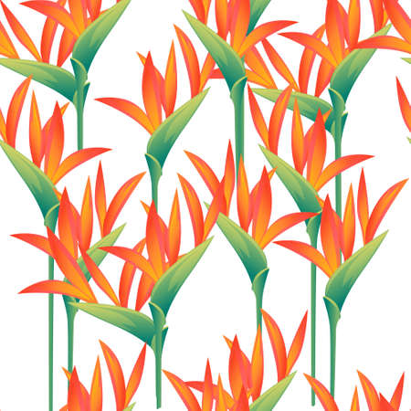Seamless pattern of four decorative flowers Bird of Paradise floral element for garden or flower pot flat vector illustration on white background.