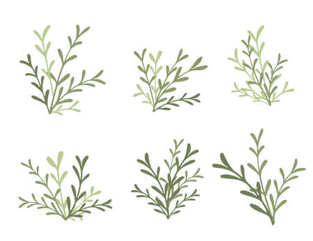 Set of green branches with leaves flat vector illustration on white background
