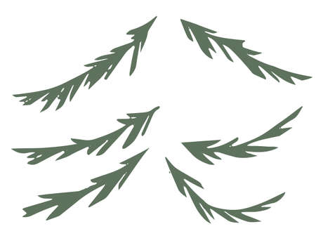 Green simple silhouette set of spruce branch for flat vector illustration isolated on white background Çizim