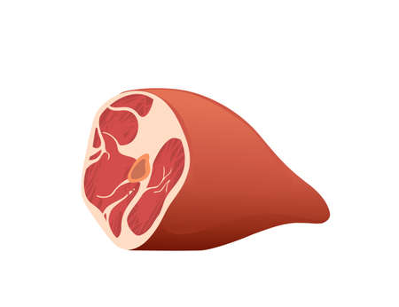 Big fresh raw piece of ham vector illustration on white background