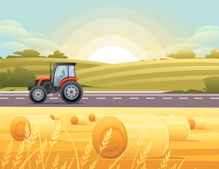 Road to city tractor is driving on the road through rural meadow with wheat field a sunny day with clear sky vector illustration 向量圖像
