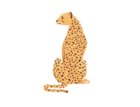 Cheetah big wild cat african savannah predator animal cartoon design character vector illustration on white background Reklamní fotografie - 167023679