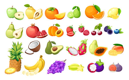 Big set of different fruits exotic fruits and berries vector illustration on white background