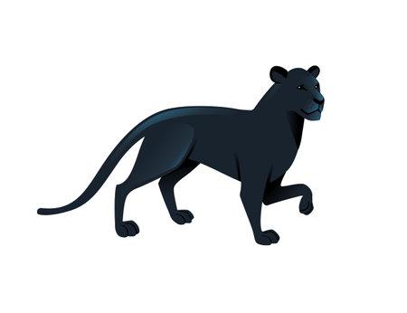 Black panther wild big cat african jungle hunter cartoon animal design vector illustration on white background. Ilustrace