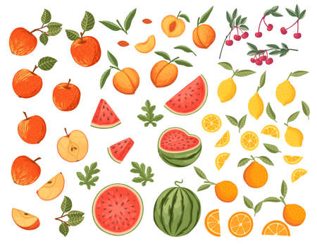 Big collection of fresh raw fruits apple watermelon orange lemon cherry and peach vector illustration on white background.