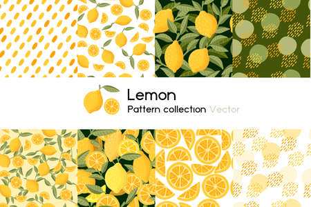 Pattern with seamless patterns collection of whole and chopped lemon with leaves or not vector illustration on white background.