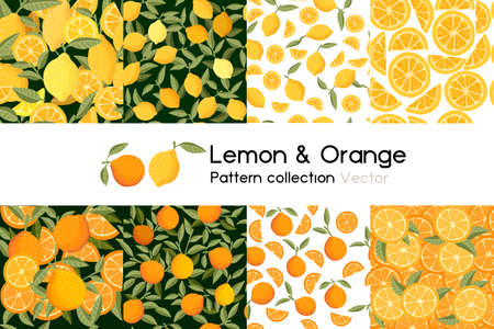 Pattern with seamless patterns collection of whole chopped orange and lemon with leaves or not vector illustration on white background Stock Illustratie