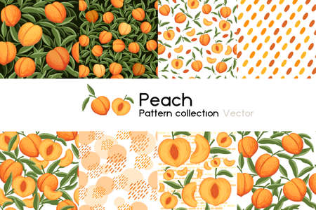 Pattern with seamless patterns collection of whole and sliced peach with leaves or not vector illustration on white background