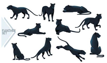 Set of Black panther wild big cat african jungle hunter cartoon animal design vector illustration on white background Stock Illustratie