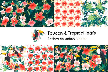 Pattern with seamless patterns collection of exotic green leaves with flower and toucan bird vector illustration on white background