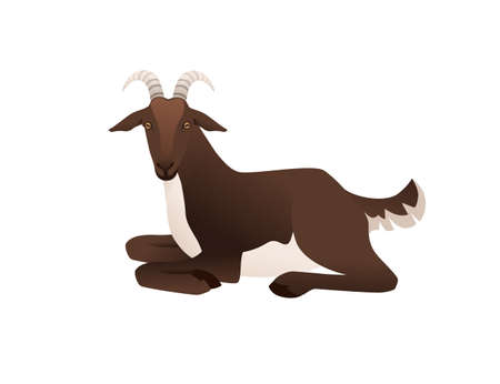 Cute adult brown goat lying on ground farm animal cartoon animal design vector illustration isolated on white background