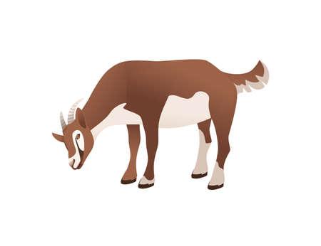 Cute adult brown goat farm animal cartoon animal design vector illustration isolated on white background Stock Illustratie
