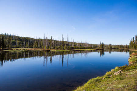 meanders: The Yellowstone River meanders through the beautiful Vall Heyden