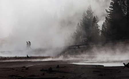 faithful: Eruption of Old Faithful geyser at Yellowstone National Park