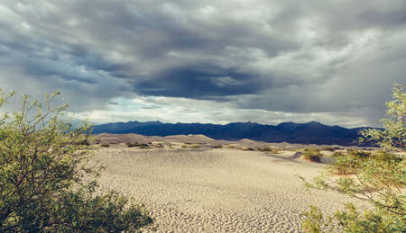 death valley: Death Valley National Park Dunes Stock Photo