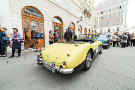 regularity: TRIESTE, ITALY - APRIL 3: Photo of a Austin Healey on the Trieste Opicina Historic. APRIL 3, 2016. Trieste Opicina Historic regularity is run for Vintage and Classic Cars.