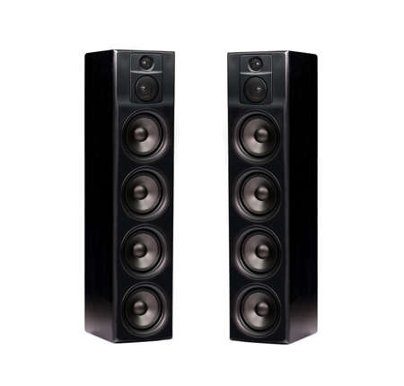 Pair of professional modern audio speakers in black wooden casing isolated on white background